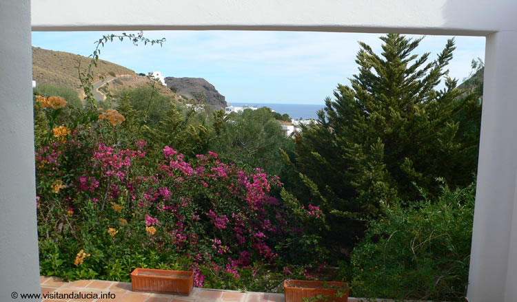 almeria cabo de gata las negras vakantiehuis casa los olivos tuin 2