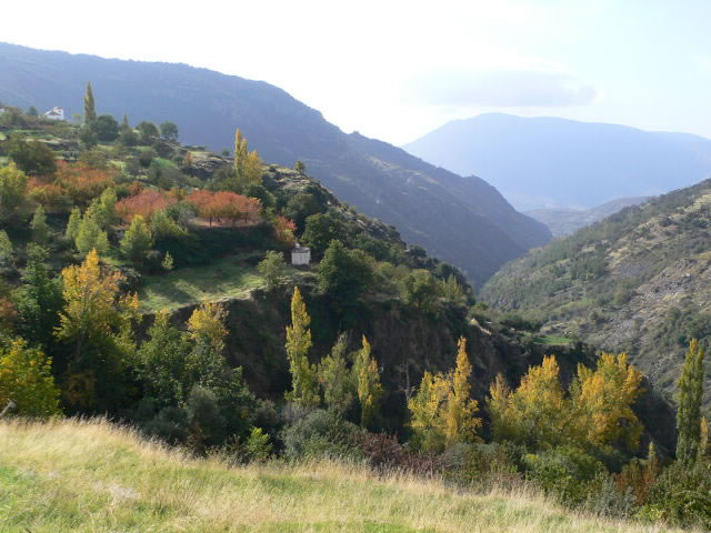 landscape barranco poqueira autumn with red leaved cherrytrees