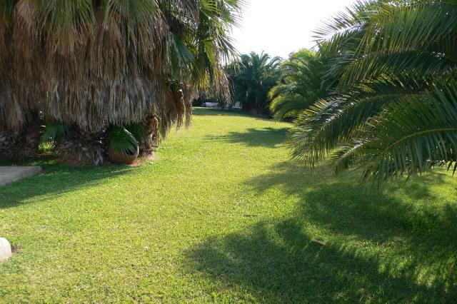 conil de la frontera holiday rental finca el olivar lawn