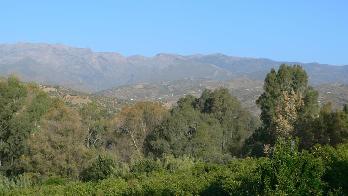 sierra de las nieves landscape malaga andalusia spain