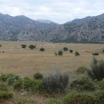 the plain of the republican what to do in grazalema, cadiz andalusia