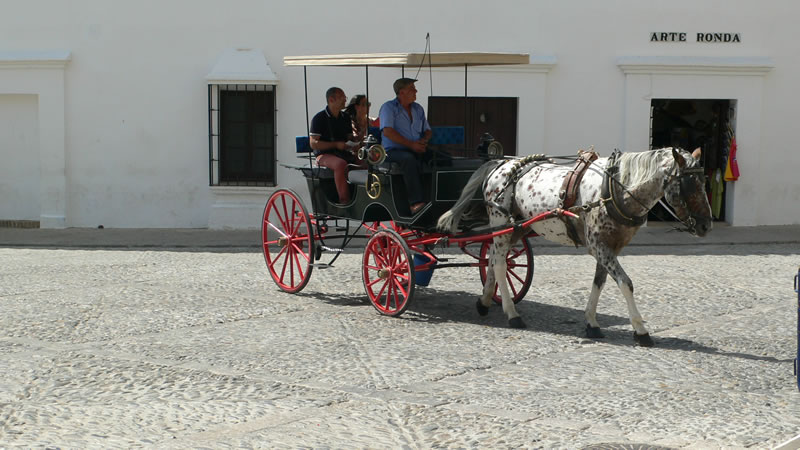 andalucia tourists in a horse carriage spain