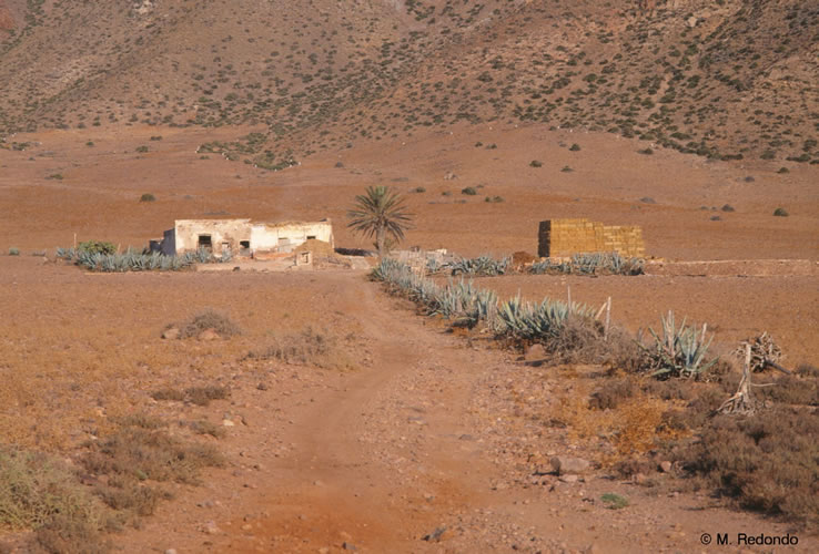 almeria cabo de gata boerderij in woestijn andalusie spanje
