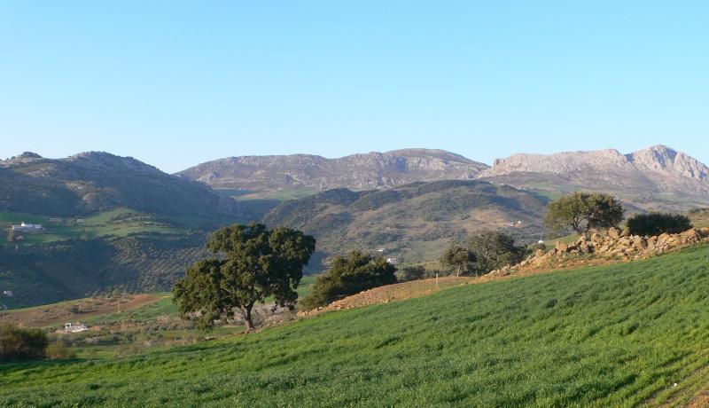 landscape el torcal green fields antequera malaga natural park