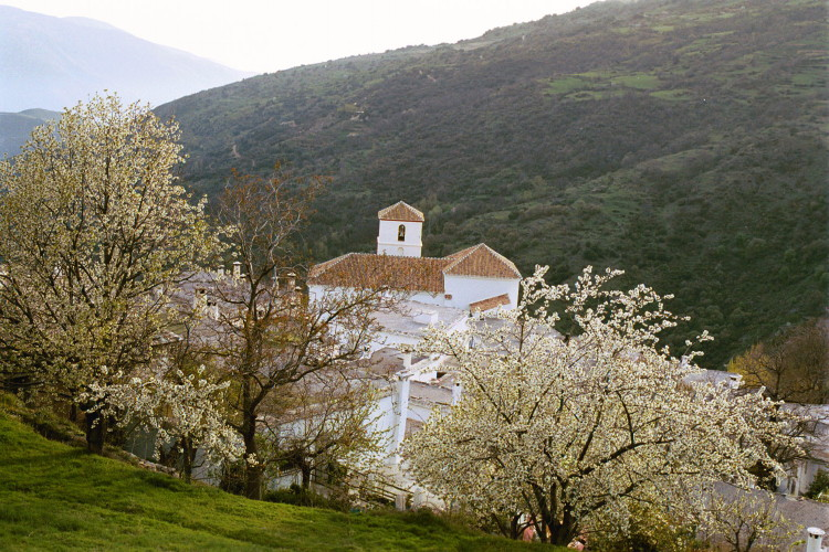 bubion alpujarra printemps et église parc national sierra nevada