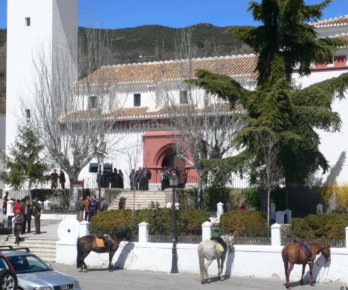 pitres horses in front of the church alpujarras granada
