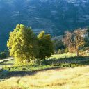 bubion landschap alpujarras granada