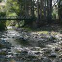 rio grande tolox ardite andalusia spain