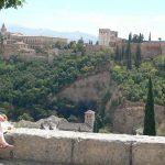 view alhambra granada andalusia