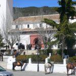 pitres horses church alpujarras granada