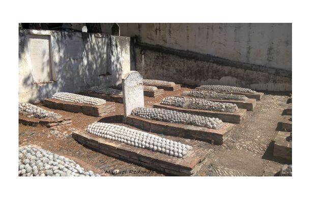 tombs covered by shells emglish cemetery malaga